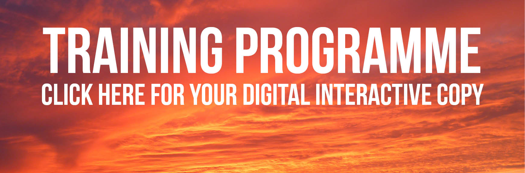 Digital Training Programme